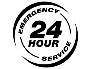 24 hours exterminator services nyc